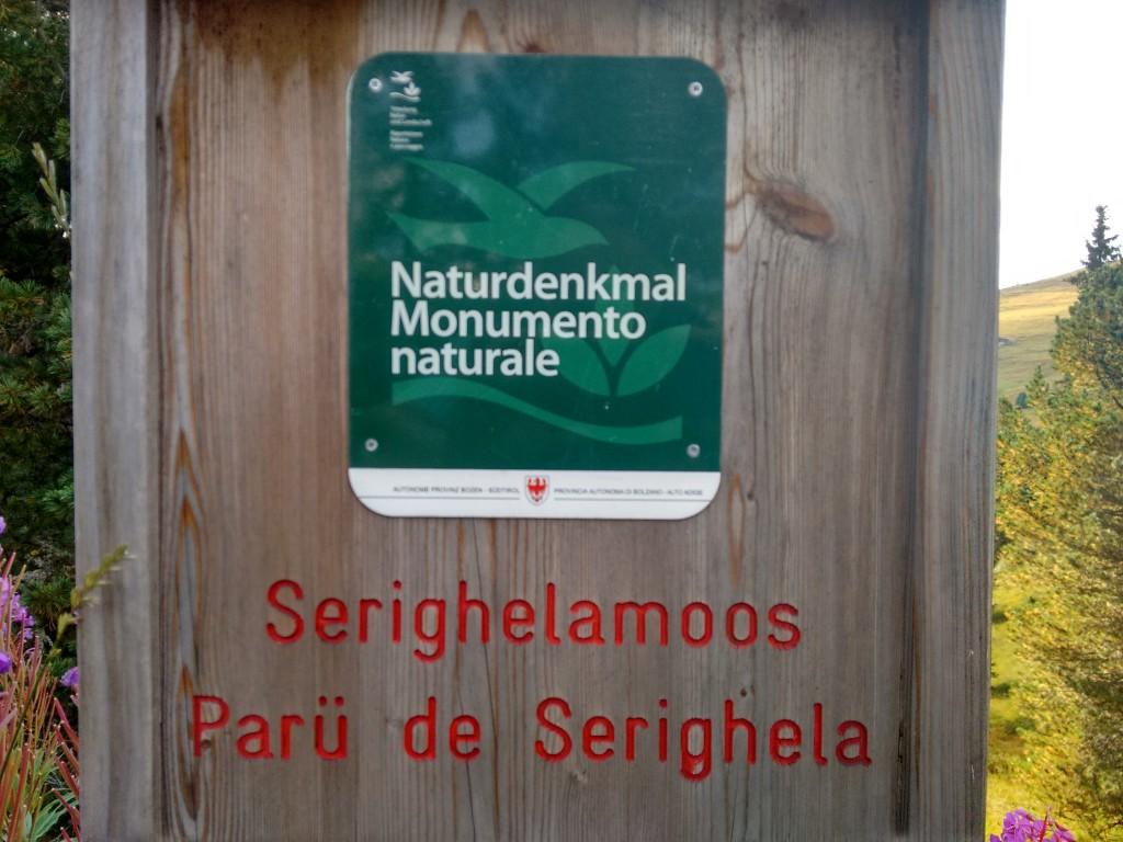 """Serighelamoos""? L dret inom ladin é Sarighela."